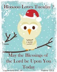 Hooo, you A Christian eCard Company shepherdlambcards. Christian Posters, Christian Artwork, Christian Quotes, The Lord Is Good, Love You All, Happy Tuesday, Happy Day, Christian Ecards, Nice Words About Life