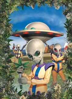 UFOs & Aliens Came To Earth To Smoke Our Weed ............We Must Stop The Madness ! !