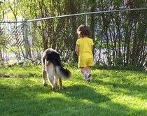 http://www.examiner.com/german-shepherd-in-akron/german-shepherd-dogs-and-children    Are German Shepherd Dogs good with kids???  Check out this article about GSDs and children!