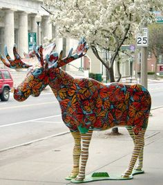 Deer Family, Majestic Animals, Elk, Vermont, Statues, Squirrel, Amazing Art, Mousse, Cities