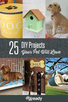 25 DIY Projects Your Pet Will Love! See them all at Diyready