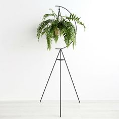 Capra Designs Crescent Plant Stand is made from powder coated steel. It's suitable for indoors or outdoors.