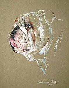Bulldog by Paulina Stasikowska Tattoo Bulldog, Cãezinhos Bulldog, Bulldog Drawing, Bulldog Breeds, Bulldog Puppies, Dog Training Methods, Basic Dog Training, Dog Training Techniques, Training Dogs