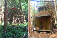 The forest was remote, masking its secret well. Mark Andre, the Environmental Services Director of Arcata Community Forest in California, hadn't explored the area for 30 years. When he finally did, he found hidden behind thickets and brambles an isolated, mysterious cabin.
