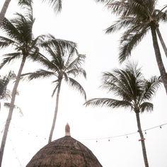 Koh Samui, Thailand    #travel #aroundtheworld #fernweh #wanderlust #travellover #thailand #kohsamui #kosamui #beach #beachdays #beachbar #beach #fishermansvillage #palms #palm #palmtrees