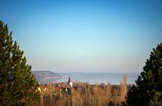 Az örvényesi erdő tél végén egy vendéglős kameráján keresztül | Balatontipp Mountains, Nature, Travel, Viajes, Naturaleza, Destinations, Traveling, Trips, Bergen