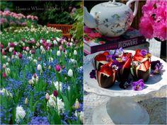 Pastel Chocolate Flower Cups #WorldMarket