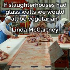 If slaughterhouses had glass walls we would all be #vegetarian. Linda McCartney  #quote