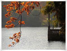 #EssenReisenLeben #Herbst