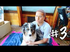 9 Things You Might Not Know About Service Dogs - YouTube