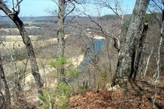 Ilinois River n Tahlequah, Oklahoma early spring. Great float/canoe trips.