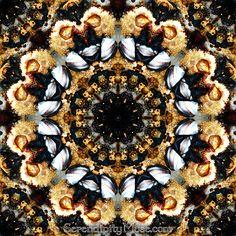 Day 33: Kaleidoscope 2 (traditional)