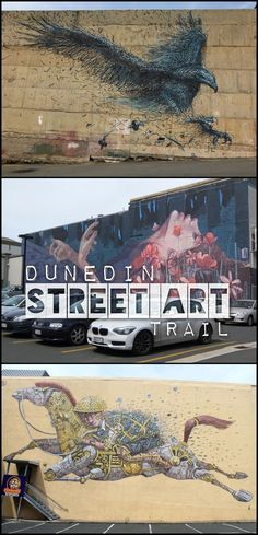 The Dunedin street art trail, home to some of the best street art in New Zealand -- so many amazing murals!