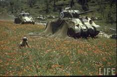 In this picture of the Life's photographer George Silk some American M4 Sherman tanks parked in a field of poppies during the Italian Campaign in August 1944. Note the soldier crouched in the middle of the flowers as a relax moment, but also the gun of the second Sherman traversed as if to counter a possible threat from the side. The date and the landscape suggest the Central Apennines likely during the first operations against the Gothic Line. A question for the armored vehicles expert…