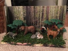 Forest habitat. shoe box project. Grizzly Bear Habitat, Deer Habitat, Forest Habitat, Shoe Box Diorama, Diorama Ideas, Science Fair Projects, School Projects, Ecosystems Projects, Forest Ecosystem