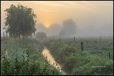 Foggy Sunrise in Flanders Fields  #sunrise #misty #zonsopkomst #atmosphere #goldenhour #goldenlight #flanders #mooistevanvlaanderen #vlaanderen #westvlaanderen #sergeramellireview #visitflanders #viewbugfeature #visitbelgium #igflanders #zoomnl #loves_united_belgium #loves_united_europe #natuurenbos #natuurpunt #naturephotography #nature_brilliance #naturelover_gr #ig_countryside #zoomnl #landschapvzw #landscapephotography #menen