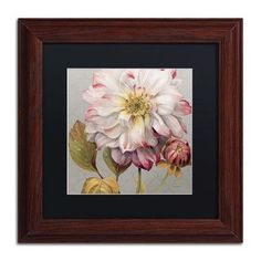 "Trademark Art ""Classically Beautiful II"" by Lisa Audit Framed Painting Print Size: 11"" H x 11"" W x 0.5"" D"