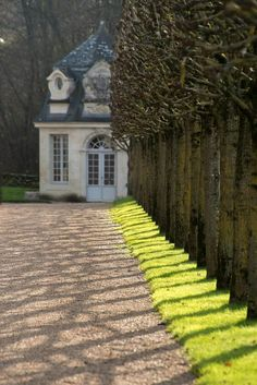 Château de Villandry (Indre-et-Loire) Pleached trees French Country House, Town And Country, Country Life, Château De Villandry, Gray Garden, Beautiful Homes, Beautiful Places, Belle France, Paris France
