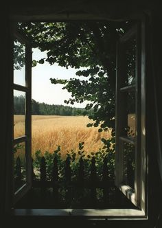 62 ideas for nature pictures country summer Beautiful World, Beautiful Places, Nature Architecture, Jardin Decor, Window View, Open Window, Through The Window, Nature Pictures, Farm Life
