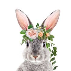 Baby Rabbit, Bunny With Flower Crown, Baby Animals Art Print By Synplus Duvet Cover by synplus Crown Illustration, Watercolor Illustration, Watercolor Art, Baby Animal Drawings, Image Deco, Bunny Painting, Rabbit Art, Bunny Art, Watercolor Animals