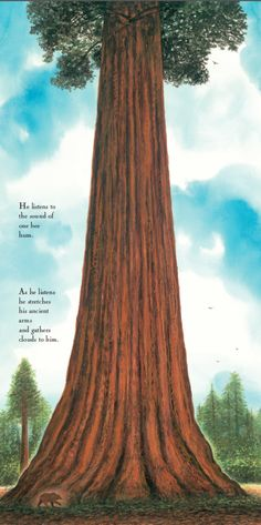 Sequoia, by Tony Johnston, paintings by Wendell Minor