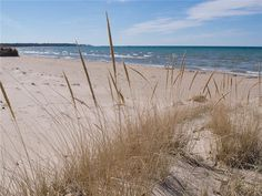 Driftwood Shores: The best beach on Lake Huron! - Grand Bend Cottage Rental - DI-19985