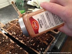cinnamon as anti fungal for starting seeds.