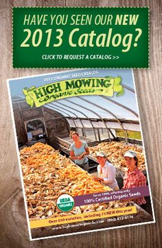 High Mowing Organic Seeds. 100% organic, totally non-GMO. Great selection of interesting heirloom, open-pollinated and hybrid seeds.