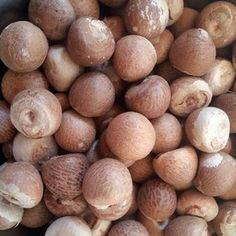 Nuts & Kernels – Agro Live Stock Farm Nuts Online, Sunflower Kernels, Almond Nut, Increase Height, Golden Raisins, Apricot Kernels, Peanut Oil, Frying Oil, Yummy Snacks