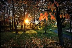 """What a great fall sunrise photo and today's """"Photo of the Day!"""" take a look at this one and post up your thoughts"""