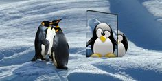 How to Build Your Own Bootable Linux Live CD #Linux