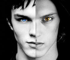 Will Herondale and Jace Herondale let me just say Nicholas Hoult would be THE BEST WILL HERONDALE.