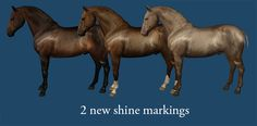 2 shine markings - by Che Marshall on Equus-Sims