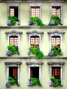 Repetition - very effective! - The window #planters really add a lot to the overall look and feel. They soften things up.