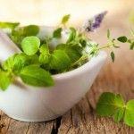 Treating acute and chronic conditions with herbs. #BotanicalMedicine #NaturalMedicine #SCNM #Naturopath