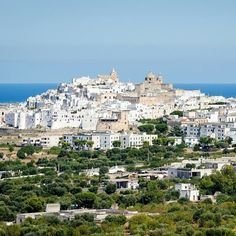 Ostuni. The white city located in blue painted blue._  //Ostuni: la città bianca in mezzo al blu dipinto di blu.  _ _ _  #ostuni #puglia #presidentlife #travel #mar #instagram #worldtour #nature #naturelovers #pugliaglobetrotter #weareinpuglia #cavalierierrantidipuglia #naturepic #instasea #sealovers #sea #italia #italy #southitaly #kingdom #argonaut