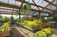 L'area dedicata alle piante da esterno