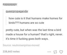smh why cant birds build houses for us??????