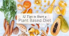Want to know how to start a Whole Food Plant Based Diet? Check out these easy and powerful tips to ensure your success - You can also join our Free Online Course.