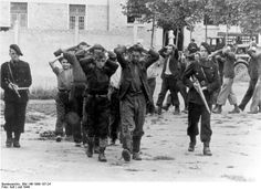 Members of the French antifascist Resistance caught prisoners by a Milice Francaise ( Vichy collaborationists) unit.France July 1944