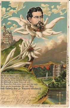 https://farm6.staticflickr.com/5259/5451772359_39eace0bf0_b.jpg   Ludwig II Of Bavaria Edelweiss Memorial Postcard