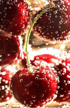 Cool looking cherry picture with airy bubbles. Love the deep dark red of the cherries! Deco Cafe, Cool Winter, Wow Photo, Photo Food, I See Red, Cherries Jubilee, Red Aesthetic, Cherry Red, Cherry Baby