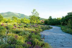 "Piet Oudolf's New Garden Book, ""Plantings""   Architectural Digest"