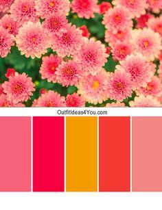 color combination - Pesquisa Google
