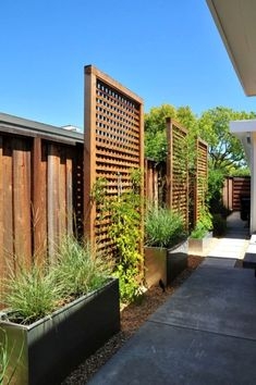 Inspiring Cheap Backyard Privacy Fence Design Ideas - Page 25 of 84 Cheap Privacy Fence, Privacy Fence Landscaping, Privacy Fence Designs, Small Backyard Landscaping, Backyard Fences, Privacy Trellis, Pool Fence, Fence Garden, Garden Bed