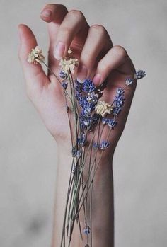 DeviantArt: More Like Hands by waloomeloo Yennefer Of Vengerberg, Hand Photography, Neon Photography, Hand Flowers, Hand Reference, Little Things, Human Body, Bloom, Hair Accessories