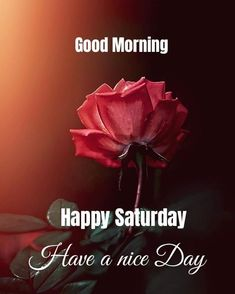 Saturday Morning Quotes, Good Morning Happy Saturday, G Morning, Modern Tv Wall, Good Morning Beautiful Images, Days Of Week, Today Quotes, Morning Greeting, Good Day