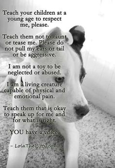 Teach Your Children To Respect Our Animal Friends