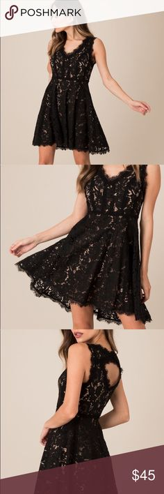 Black Swan: Lucia Lace Dress Super cute black lace cocktail dress! I think this would be great for a formal event or prom! I bought it to wear for a wedding but decided to wear a different dress so never worn. Black Swan Dresses Prom