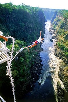Why not?  Bungy Jumping Off 152 Meter High Victoria Falls Bridge Above Zambezi River Between Zimbabwe And Zambia.